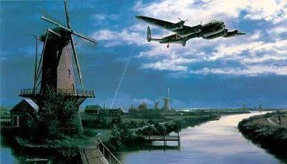 Picture of Homeward Bound - Collectors Edition SOLD