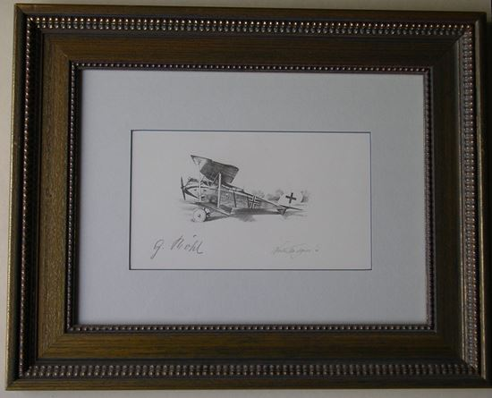 Picture of Halberstadt CLIV Signed by Gustav BOEHL - Original Pencil Drawing by Nicolas Trudgian
